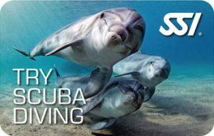 Try Scuba Diving o Bautismo de buceo