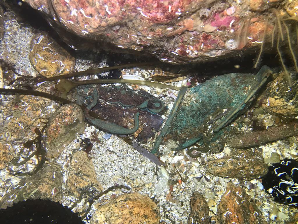 restos de bronce