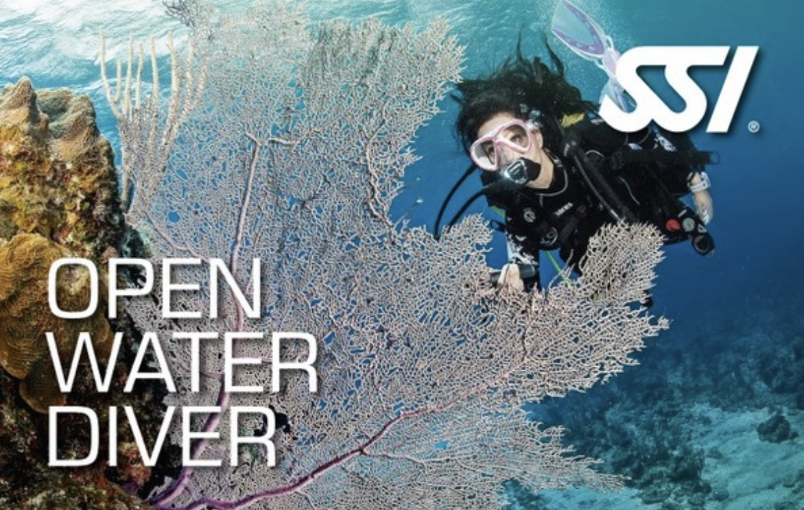 Curso open water diver en Buceo Malpica