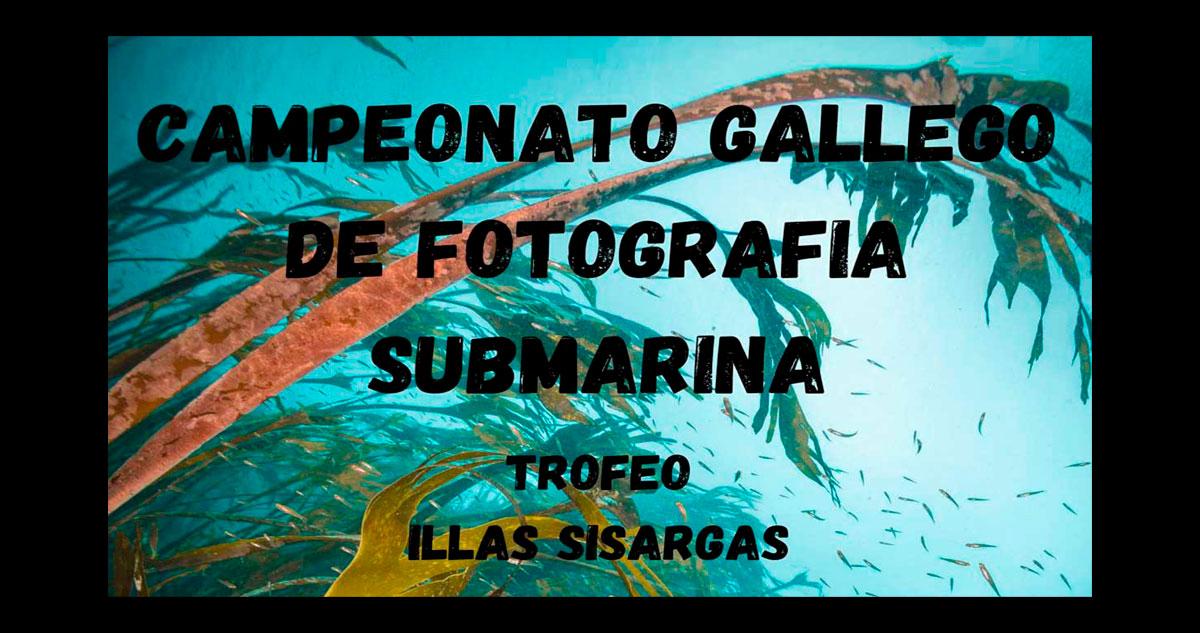 Campeonato Gallego de fotografía submarina